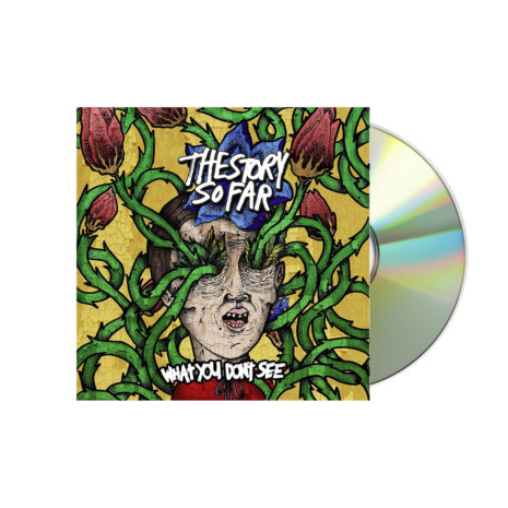 THE STORY SO FAR What You Don't See CD